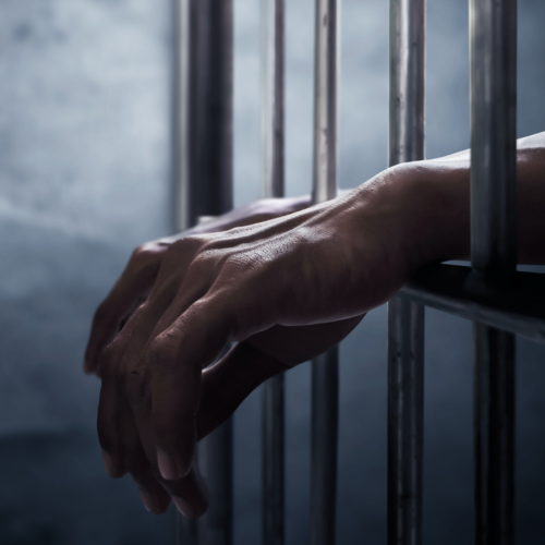 Systematic Dehumanization in American Prisons: A Brief Overview